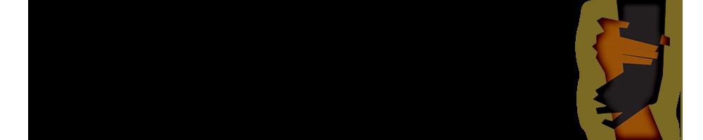 Diaspora Support Network Logo